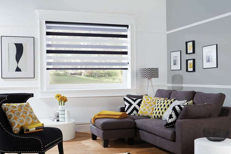 black vision blinds